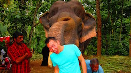 Huang poses with an elephant during his internship in India.